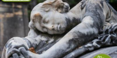 Quality Tours Mariola-Ruta Cementerio Monumental Alcoy-Monumental Cemetery Tour Alcoy sheduled-Ruta Cementeri Monumental Alcoi programada
