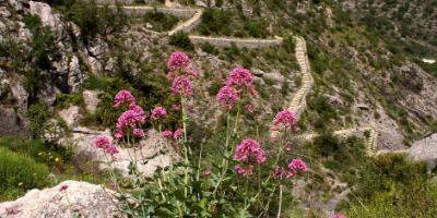 VIVENZZIA-Alicante Natural y Sostenible-Natural and Sustainable Alicante-Alacant Natural i Sostenible