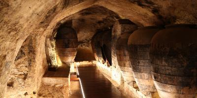 MURVIEDRO BODEGA HISTORICA-Visita la Bodega Histórica Murviedro-Visit Murviedro Historical Winery-Visita el Celler Històric Murviedro