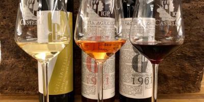 BODEGUES BESALDUCH VALLS & BELLMUNT-Enoturismo en el corazón del Maestrazgo-Wine experience at the heart of Maestrazgo region-Enoturisme al cor del Maestrat