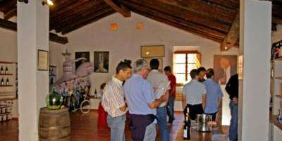 Bodega Vera de Estenas-Visita viñedo, bodega y cata de 3 vinos-Tour of vineyards, winery and tasting of 3 wines-Visita vinya, celler i tast de 3 vins