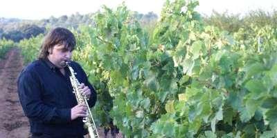 Magnanimvs-Visita Bodega Magnanimvs con cata degustación-Visit to Bodega Magnanimvs with wine tasting-Visita Celler Magnanimvs amb tast degustació