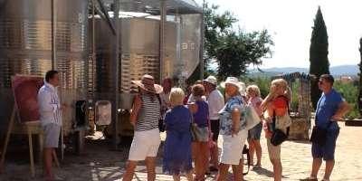 Bodegas y viñedos Barón d'Alba-Enoturismo en les Useres-Wine tourism in les Useres-Enoturisme a les Useres