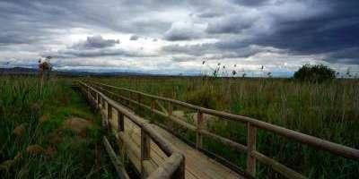 Avanzatour-Ruta cicloturística por Carrizales y la Reserva-Bike tour in Carrizales and the Nature Reserve-Ruta cicloturística per Canyissers i la Reserva
