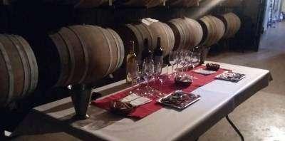 Bodegas Rebollar-Cata maridada con embutido en bodega familiar-Wine tasting and pairing with sausages at a family-run winery-Tast maridat amb embotit en celler familiar