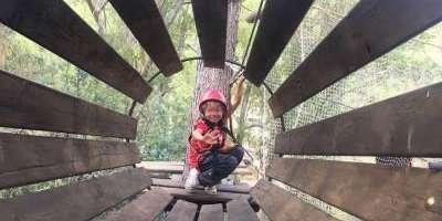 Sargantana Aventura-Canoping, circuito arbóreo-Canopying, treetop circuit-Canoping, circuit arbori