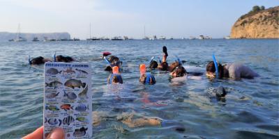 Kayak Javea-En kayak y snorkel a la Cova Tallada y Cala Granadella-Kayak & snorkel tours to Cova Tallada and Cala Granadella-En kayak i snorkel a la Cova Tallada i Cala Granadella