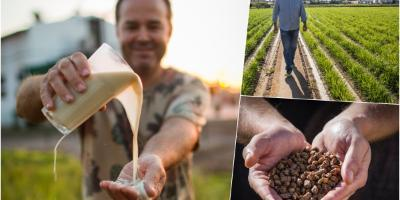 Sequer Lo Blanch-Chufa experience-Tiger nuts experience-Xufa experience