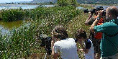 Actio Actividades Educativas-Birding en familia-Birding for families-Birding en família
