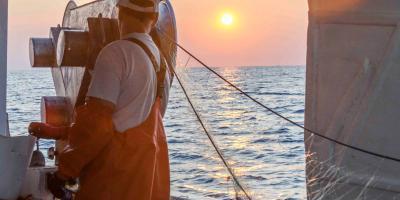 Trip&Feel - Un Mar de Experiencias-Pescaturismo Vinaròs-Fishing tourism Vinaròs-Pescaturisme Vinaròs