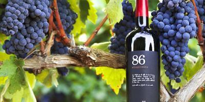 BODEGA LES USERES-Encuentra nuestra identidad vinícola en el entorno del Peñagolosa-Find our wine identity in the Peñagolosa mountain environment-Troba la nostra identitat vinícola a l'entorn del Penyagolosa