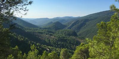 AMIGOS DEL PAISAJE-Senderismo en la Reserva de la Biosfera del Alto Turia-Hiking in the Alto Turia Biosphere Reserve-Senderisme en la Reserva de la Biosfera de l'Alt Túria