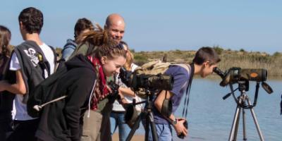 Visit Natura-Historia natural y cultural del Parque Natural de l'Albufera de València-Cultural & natural history of the Albufera of València-Història natural i cultural del Parc Natural de l'Albufera de València