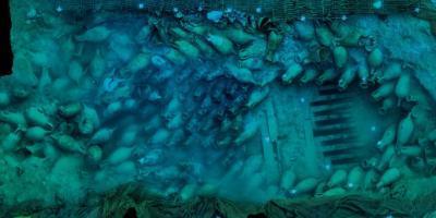 Alisub-Bou Ferrer. Un viaje submarino de 2000 años-Bou Ferrer. A 2000-year underwater journey-Bou Ferrer. Un viatge submarí de 2000 anys