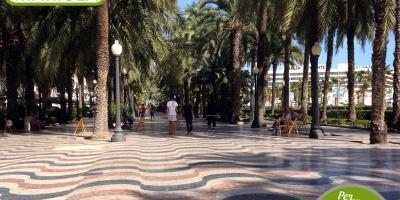 Quality Tours Mariola-Excursión Escolar Alicante una puerta al mar-Schooltrip Alicante an open door to the sea-Excursió Escolar Alacant una porta al mar