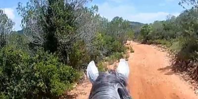 Field and Horse-Un día a caballo por el Macizo del Caroig-One day horse riding trough Macizo del Caroig-Un dia a cavall pel Massís del Caroig