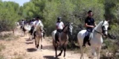 Field and Horse-Iniciación al mundo del caballo-Initiation to the world of the horse-Iniciació al món del cavall