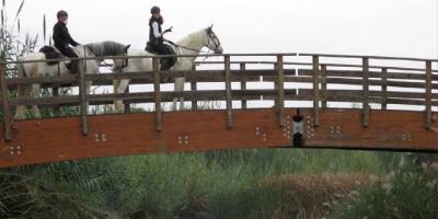 Field and Horse-Paseo a caballo por cauce fluvial: Paraje Natural del río Turia.-Horse ride along a river bed: Turia River Natural Area.-Passeig a cavall per llit fluvial: Paratge Natural del riu Túria.