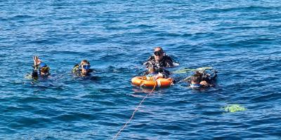 Discover scuba diving in Dénia
