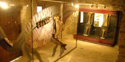 Dinomania Cinctorres Jaciment- Museu