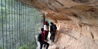 Guided visit to the Barranco Moreno