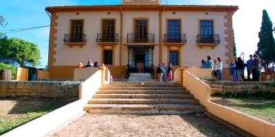 Visita viñedo, bodega y cata de 3 vinos