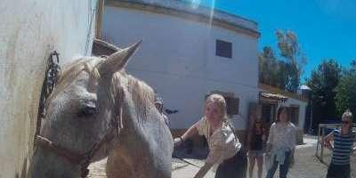 Valencia Adventure-Mi primer contacto con el mundo del caballo-My first contact with the world of horses-El meu primer contacte amb el món del cavall