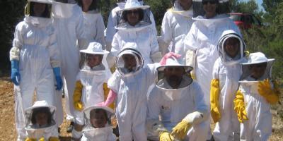 Apivillores, bee tourism