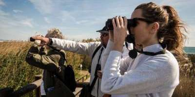 Excursiones guiadas de birdwatching