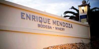 Visita guiada y cata de 7 de nuestros vinos