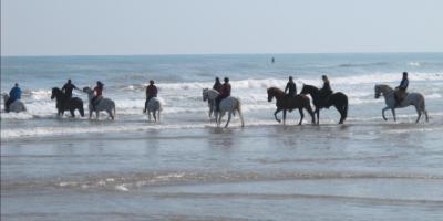 Cabalgar por la playa y gastronomía valenciana