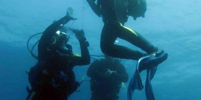 Discover incredible underwater scenery in Benidorm