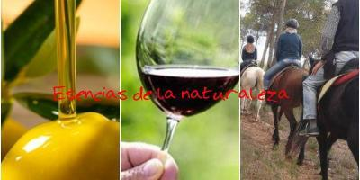 Essence and fusion with nature: Oleo Wine Tourism and horse-riding