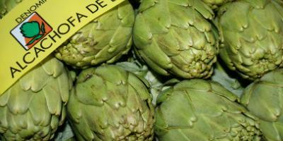 Benicarlo's Artichoke Tour: from the farm to the fork