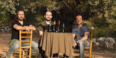 Siente el latido de los olivos milenarios: secretos y sabores