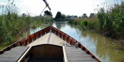 The literary side of L'Albufera