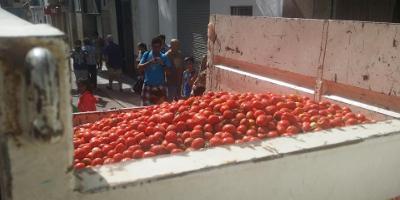 Familiar Tomatina