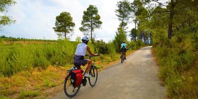Orxata, paella i bicicleta a les afores de València