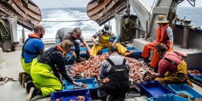Trip&Feel - Un Mar de Experiencias-Pescaturimo Xàbia