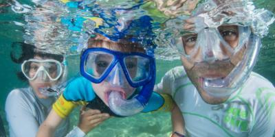 Learn about the sea with your family