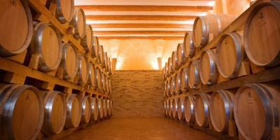 Mañana entre viñedos en la Toscana valenciana